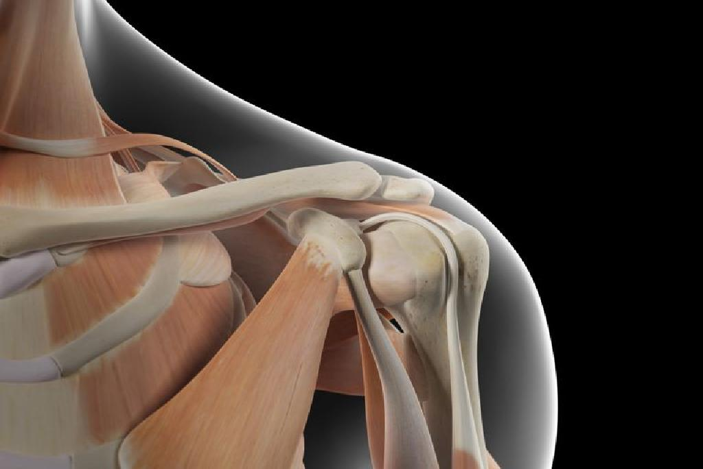 a térd artrózisát deformáló gyógyszer