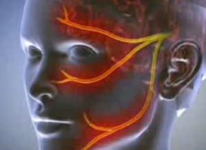Mágneses terápia az ízületek számára