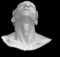 csontritkulás gyógyszer kenőcs fájdalom hatása a vállízületben