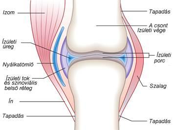 fokú térdízületi kezelés krónikus ízületi gyulladas