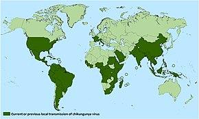 melyik országban kezelik az artritist jól az ujjak gennyes ízületi gyulladása