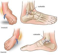 fájdalom a lábak ízületeiben kalciumhiány miatt