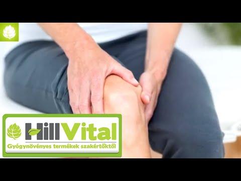 1. fokú talaris navicularis ízületek artrózisa