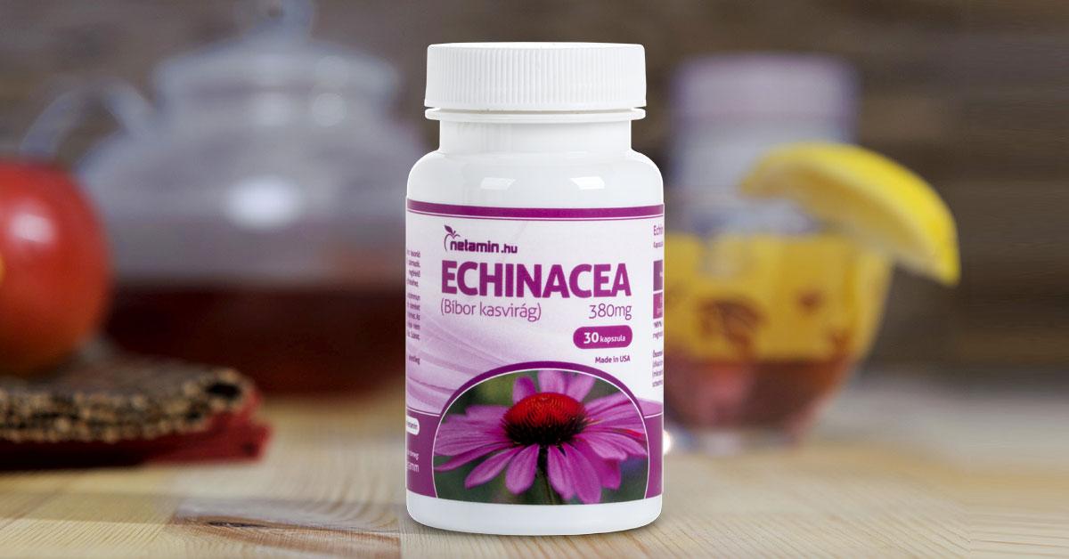 echinacea ízületi betegségekben