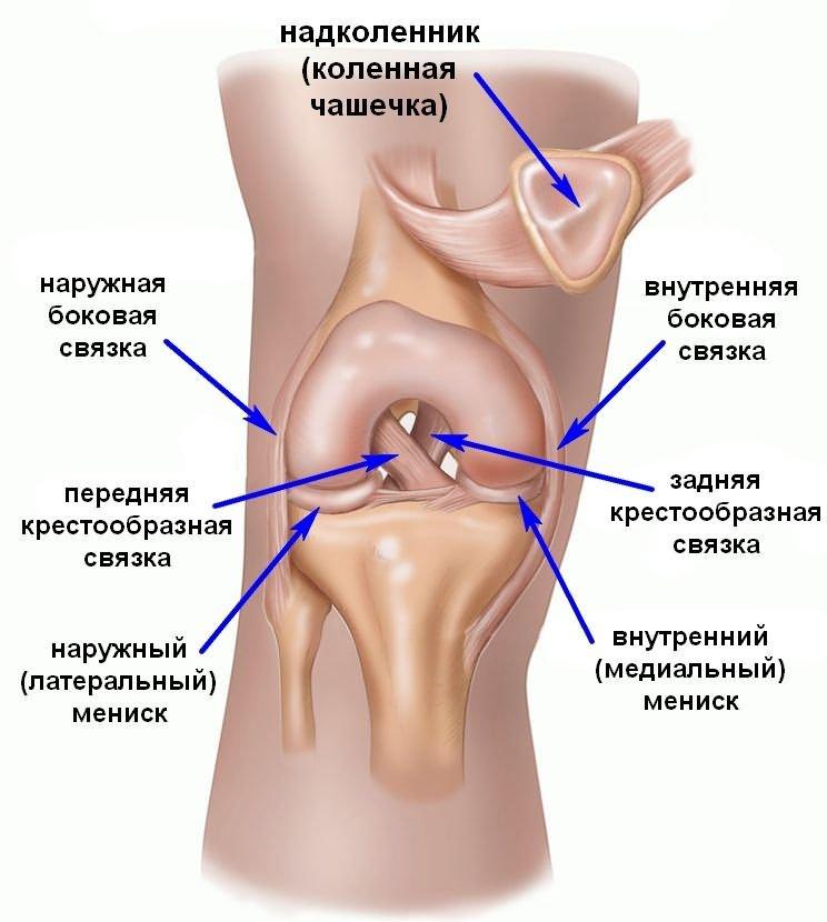 a térdízület ragasztásainak részleges törése tompa fájdalom minden ízületben