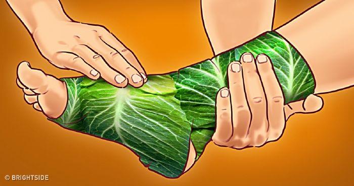 gyógynövények ízületi fájdalmak ellen