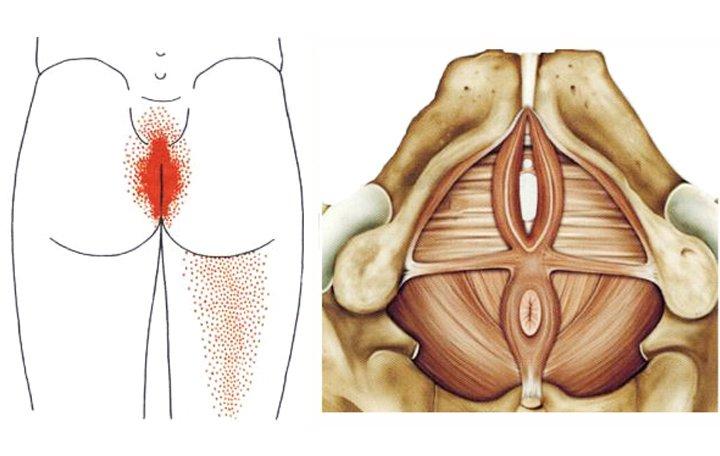 csípőízületi prognózis minden ízületi gyógyszer