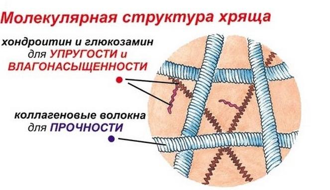 mi a jobb teraflex vagy glükozamin-kondroitin komplex