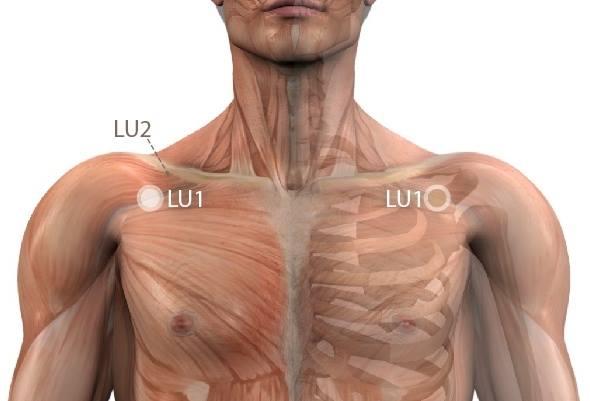 a bal vállízület tünetei