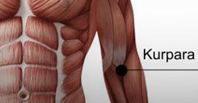 a térd tünetei és betegségei artrózis és kezelési módszerek