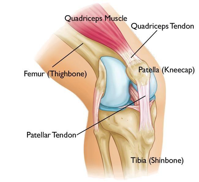 a térd patella károsodása a láb fáj az ízületben és zsibbad