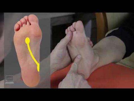 Baker-ciszta 4 oka, 4 tünete, 8 kezelési módja [teljes leírás]