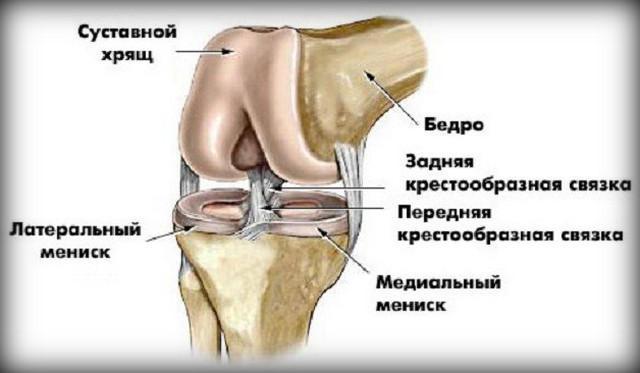ahol jobb kezelni a csípőízület artrózisát fáj a könyök és a vállak ízületei