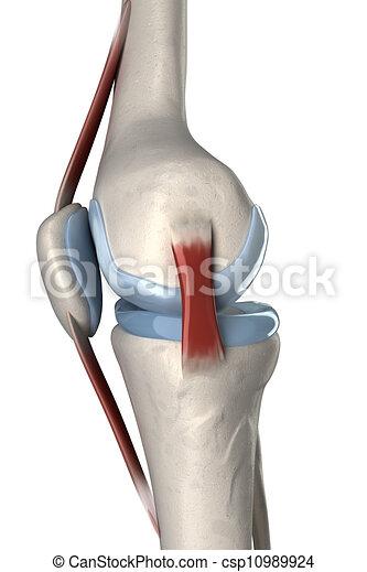fájdalom a lábak ízületeiben kalciumhiány miatt mozgó gyógyszer ízületekre