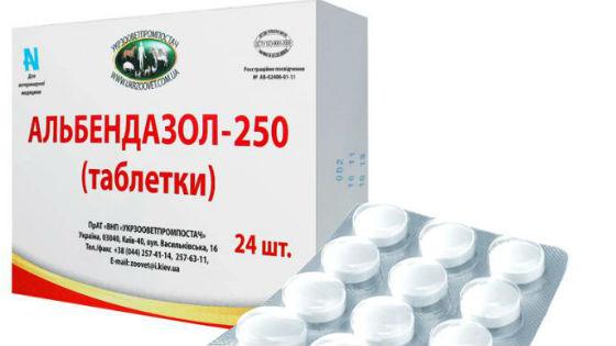 az idősek leghatékonyabb gyógyszere