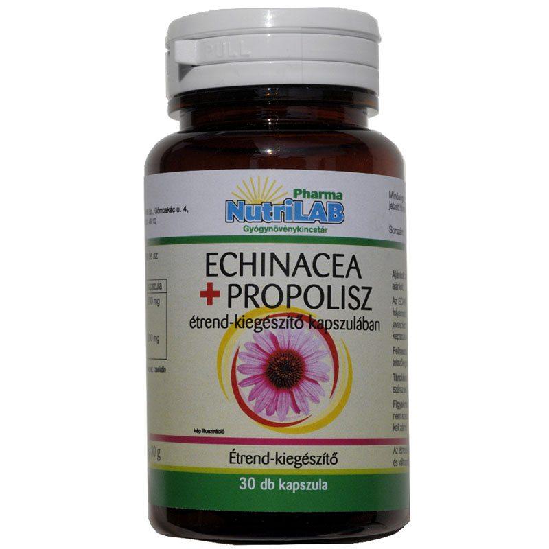 Az Echinacea csepp és tea hatása | Kapszula Center