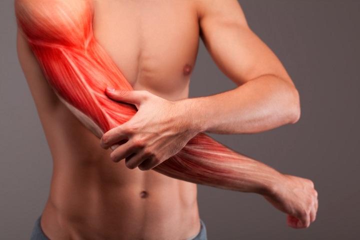fáj a karok és a lábak izmai és ízületei