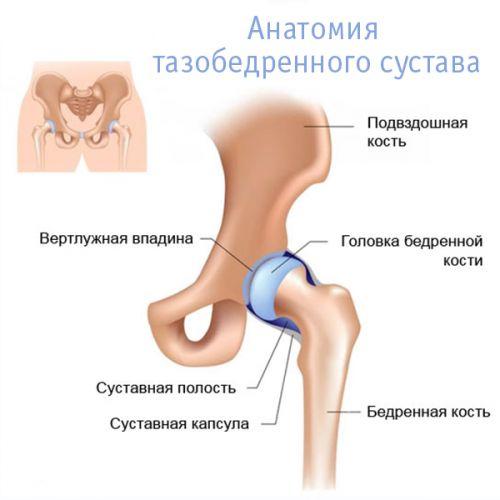 fájdalom a csípőízületben az ágyék területén