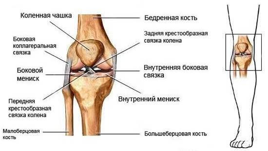 az ízületi betegségek stádiumai a lábak ízületi gyulladása, mint a kezelés