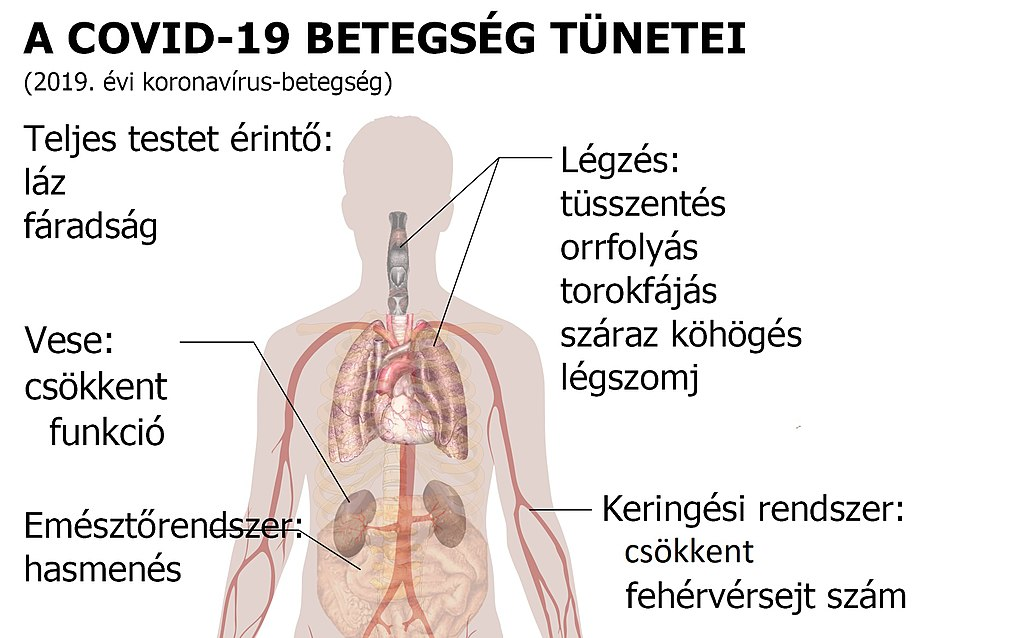 lábízületek betegség diagnosztizálása