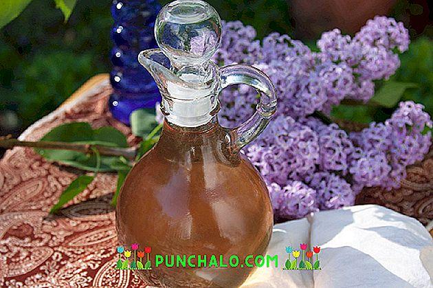 méh tinktúrák ízületi fájdalmak kezelésére csípőízület gyógyszer