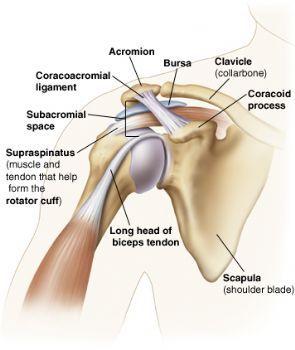 fájdalom a lábak és a nyak karjainak ízületeiben együttes gyógyszer chondroitin