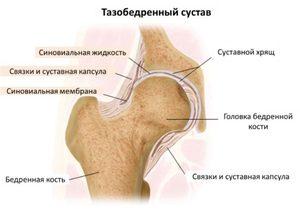 ízületi fájdalom szimulátor vállízület szerkezet működése problémamegoldás