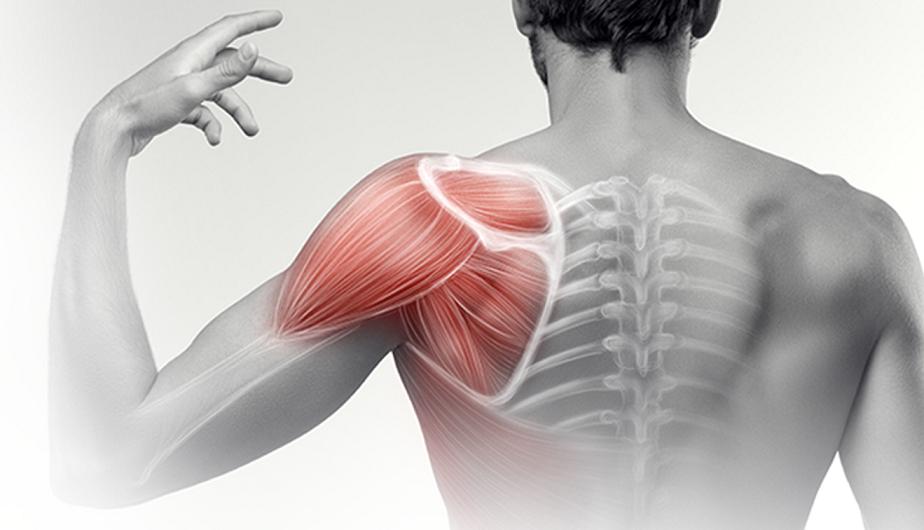 gerinc- és ízületi kezelés mennyi fáj a térd sprazs