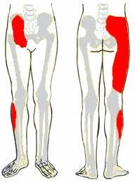 csípőízületi izületi gyulladás kezelés todicamp ízületekkel