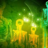 méhterápia artrózis esetén térd fájdalom duzzanat