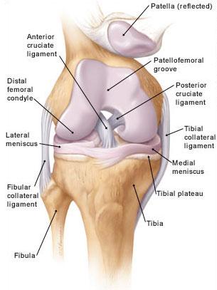amikor a gyalogos fájdalom a csípőízületben