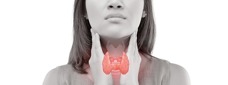 térdízület és patello-femoralízis